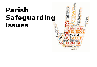 Safeguarding Committee