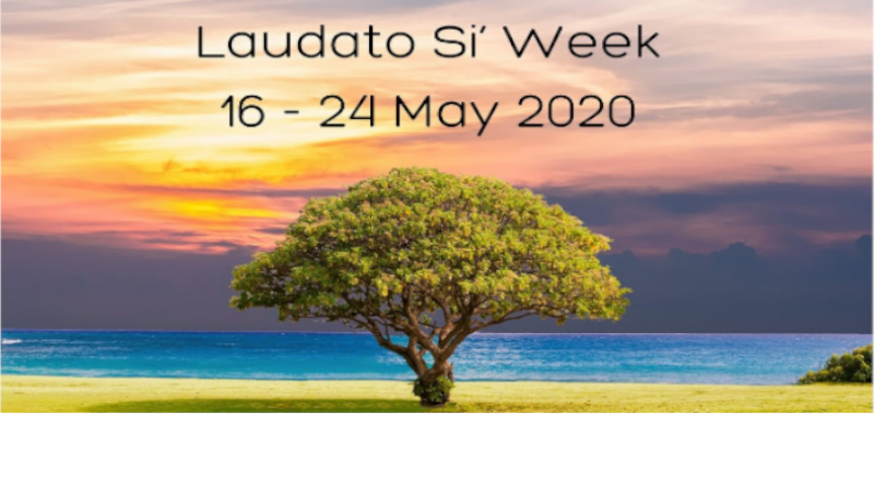 16-24 May Laudato Si' Week